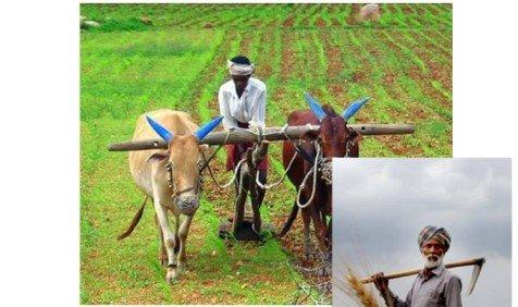 किसान सम्मान निधि योजना लिस्ट 2020 pmkisan.gov.in पीएम किसान 7वी किस्त यहाँ देखे